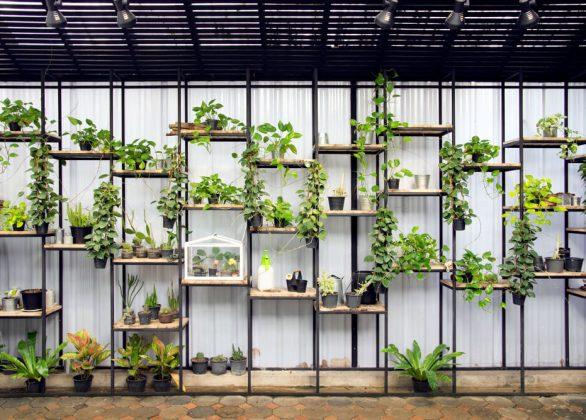 Verticaal tuinieren in huis voor een groenere woning