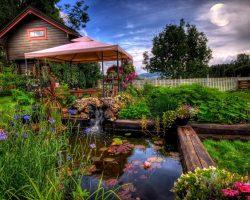 Maak je tuin compleet met een partytent