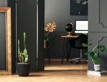 Woonkamer trends 2019, Cactussen terug in de Nederlandse woonkamers!
