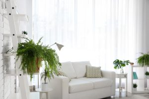 Tips om je woning gezonder te maken
